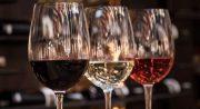 Los 5 mejores vinos para saber más de vino